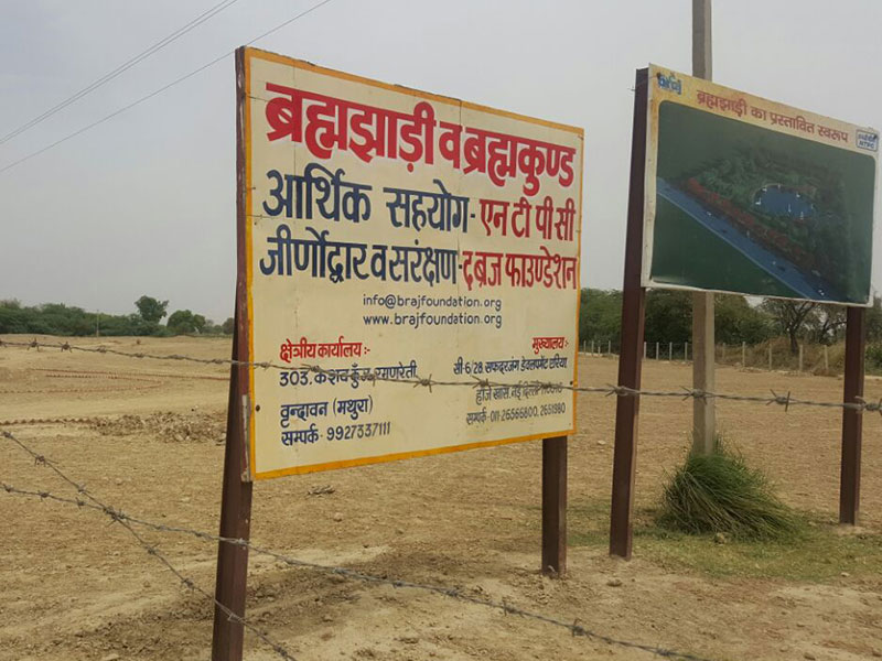 Brahma Jhadi Forest being restored with the financial help of NTPC